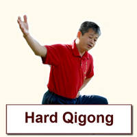 Hard Qigong Video Archive