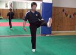 icon Wild Goose Qigong Developing Skill pt 4