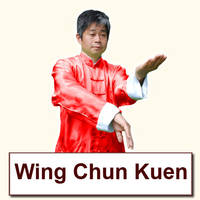 Wing Chun Video Archive