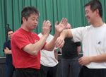 icon Wing Chun Doctor pt3